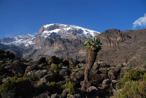 Fuldmåne-trek-Kilimanjaro