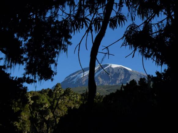 Temparatur på Kilimanjaro