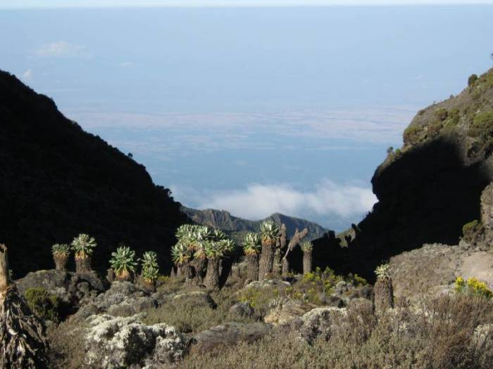 Shira-Plateau-ShiraCathedral