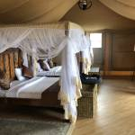 Serengeti Tented Lodge