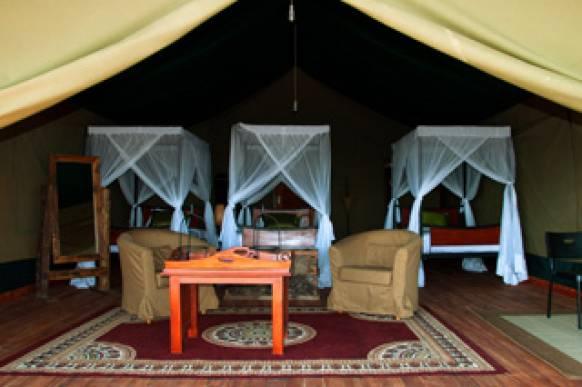 Serengeti - hvor er dyrene?