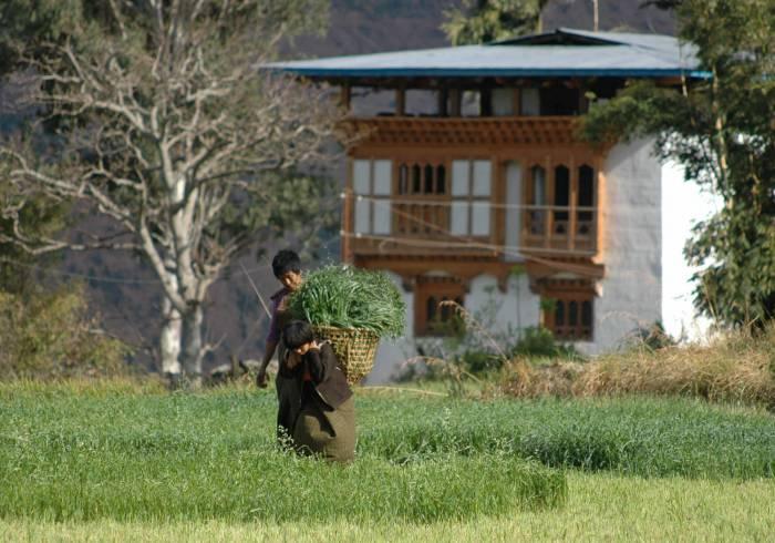 Bhutan-indrejse
