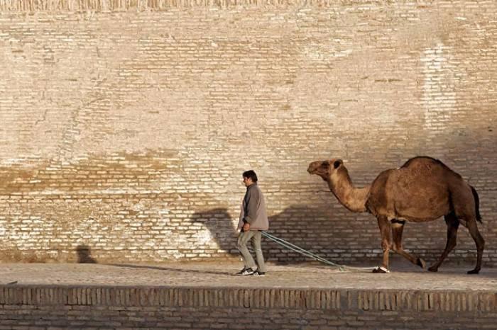 Bukhara Silkevejen