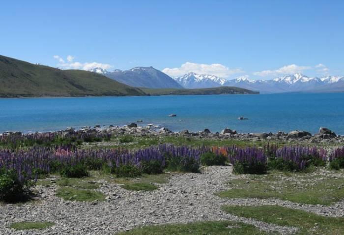 New-Zealand-trekkingtur
