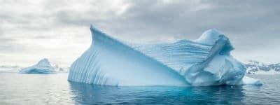 En rejse til Antarktis vil du aldrig fortryde