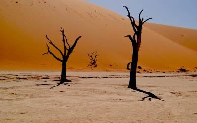 Læs mere om Namibia