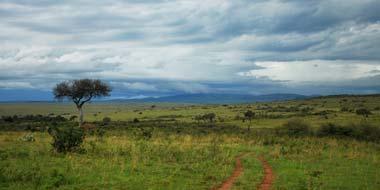 Kenyas flotte sletter