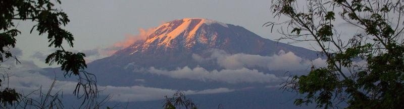 Solnedgang over Kilimajaro