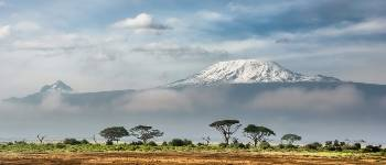 Prisen for at bestige Kilimanjaro er høj