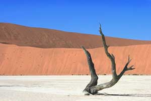 Sossusvlei - den røde ørken