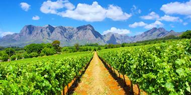Kiplings rejser til Sydafrika