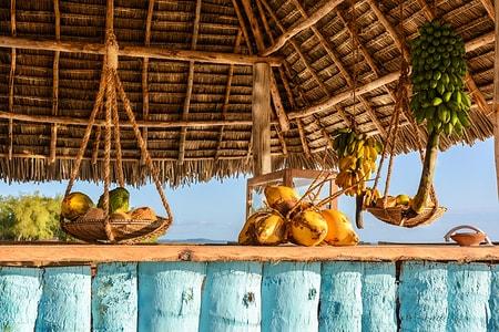 Zanzibar og afslapning