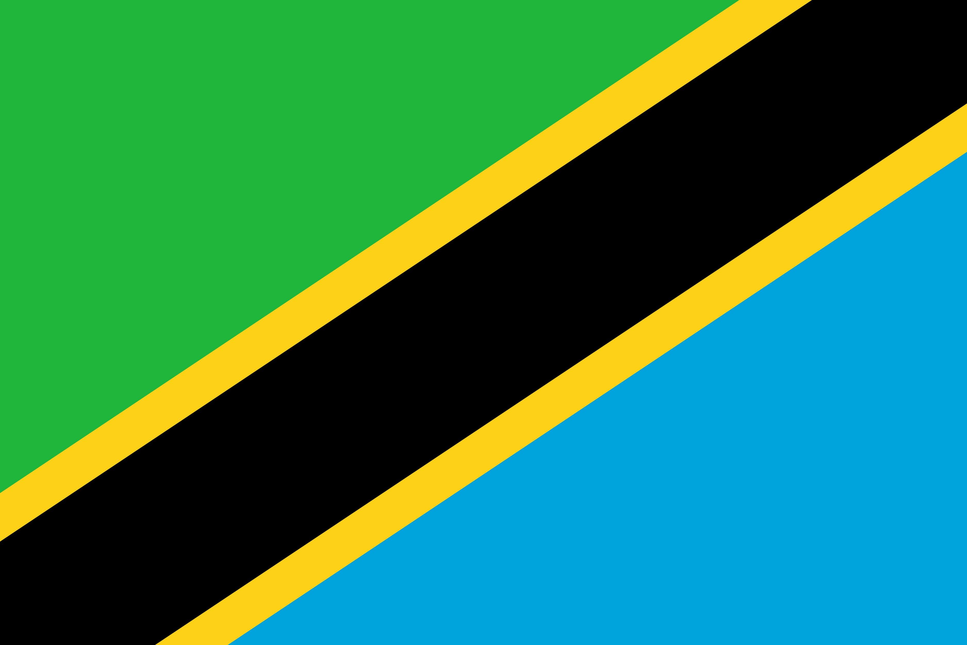 Sådan ser Tanzanias flag ud