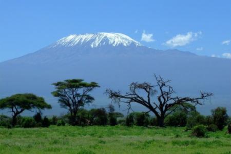 På toppen af Kilimanjaro finder du et alpint klima