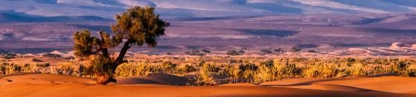Klimaet i Afrika er varmt