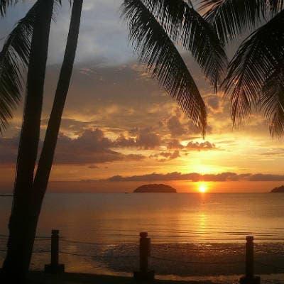 Rejs til Borneo og oplev højsæsonen