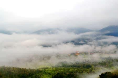 Rejser til Borneo er en rejse til et tropisk klima