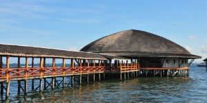 En Borneo rejse er en oplevelse for livet