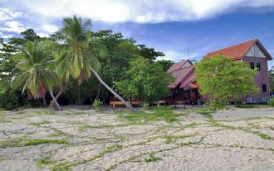Vær med til at sætte skildpaddeunger i vandet på din Borneo rejse