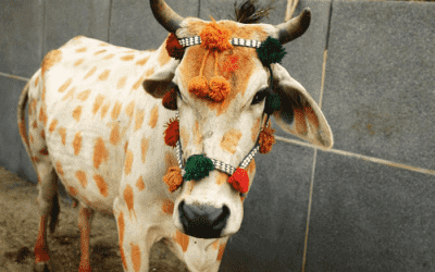 Orchha i Indien