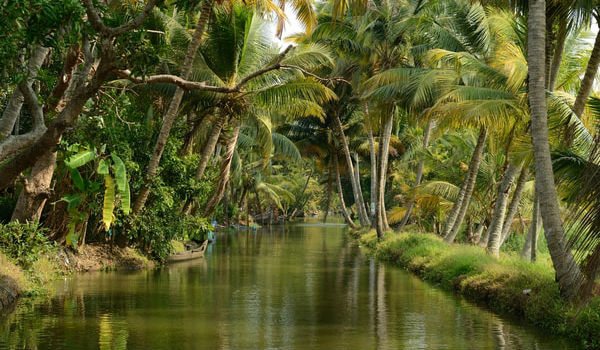 Backwaters Kerala i Indien