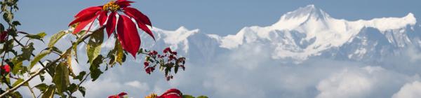 Der er mange smukke naturoplevelser i vente ved Everest National Park