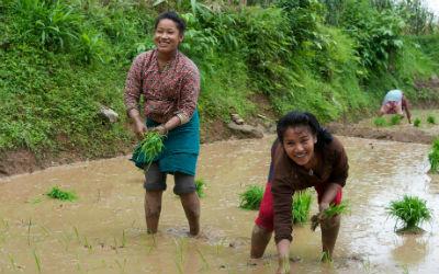 Rejs til Bandipur i Nepal