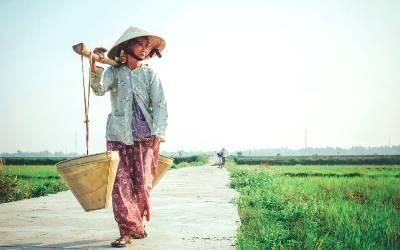 Læs mere om rejser til Vietnam