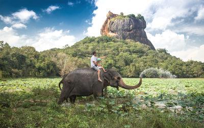 På din rejse til Sri Lanka er det at must at besøge løveklippen Sigiriya