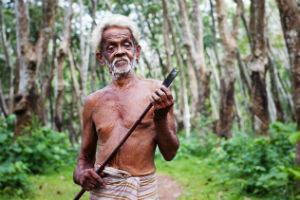 Rejser til Sri Lanka byder på mange oplevelser
