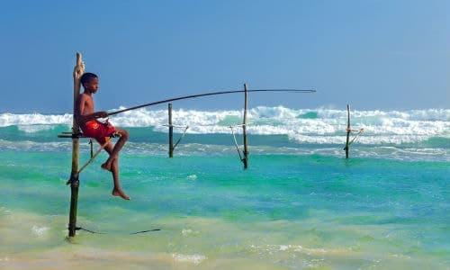 Du kan sagtens benytte engelsk på rejser til Sri Lanka