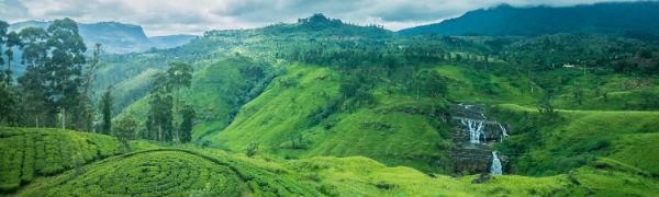 Tag på trekking i Sri Lankas smukke natur