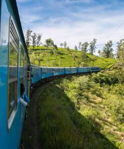 Tag på rundrejse i Sri Lanka