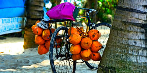 Du kan cykle til strandene på Sri Lanka