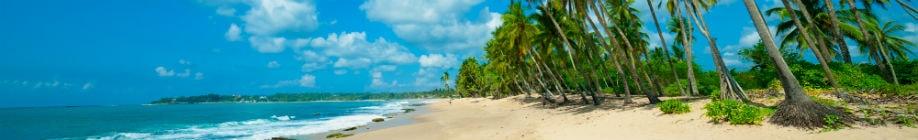 Rejs til Sri Lanka og slap af på en smuk bounty strand