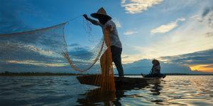 Der er mange fiskere i Vietnam