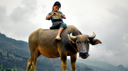 Takt og tone i Vietnam handler om høflighed og respekt