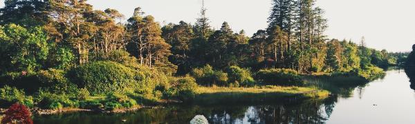 Tag på trekking rejse i Irland