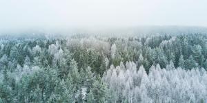 Klima i Nordeuropa