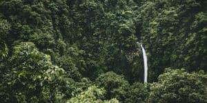 Costa Rica rejser tager dig til Arenal Volcano National Park