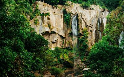 Rejs til Mellemamerika og oplev Costa Rica