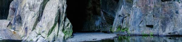 Oplev de selvlysende grotter i Waitomo