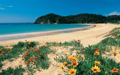 Skal du have visum med, når du rejser til New Zealand?