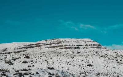 Når du tager med Kipling Travel på en Argentina rejse, så besæger vi det smukke islandskab i El Calafate