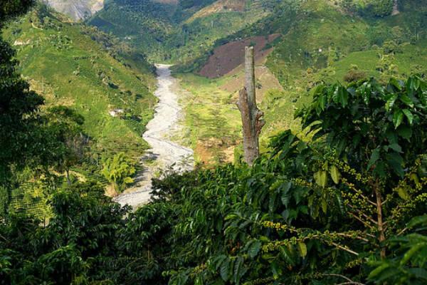 Salento er et smukt område i Colombia
