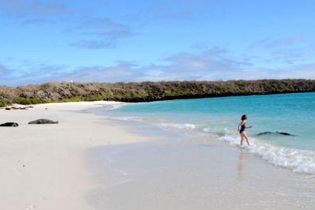 Strandene på Galapagos er meget smukke