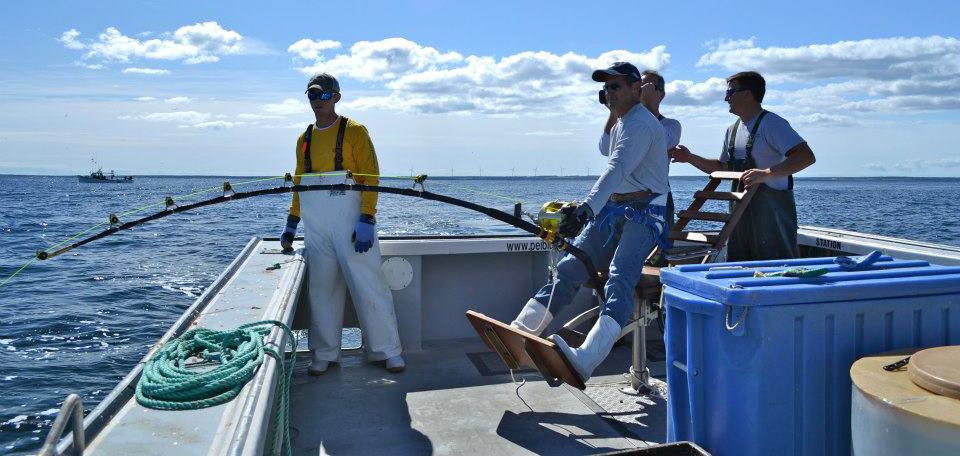 Fiskeri i Massachusetts