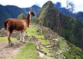 Grupperejser til Sydamerika